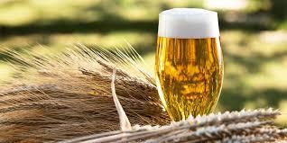 Kurz: SLADOVNÍK - PIVOVARNÍK výroba piva, spracovanie sladu ...Kurz, s ktorým sa môžete uplatniť pri výrobe piva, sladu, ale aj v reštauračných a pivárenských zariadeniach.